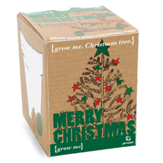 Grow your very own Christmas Tree with the Grow Me Christmas Tree kit!