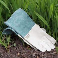 Gorgeous leather gloves, ideal for the gardening enthusiast!