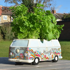 Herbert - Campervan Planter