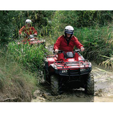 Quad Bike Thrill Experience Day