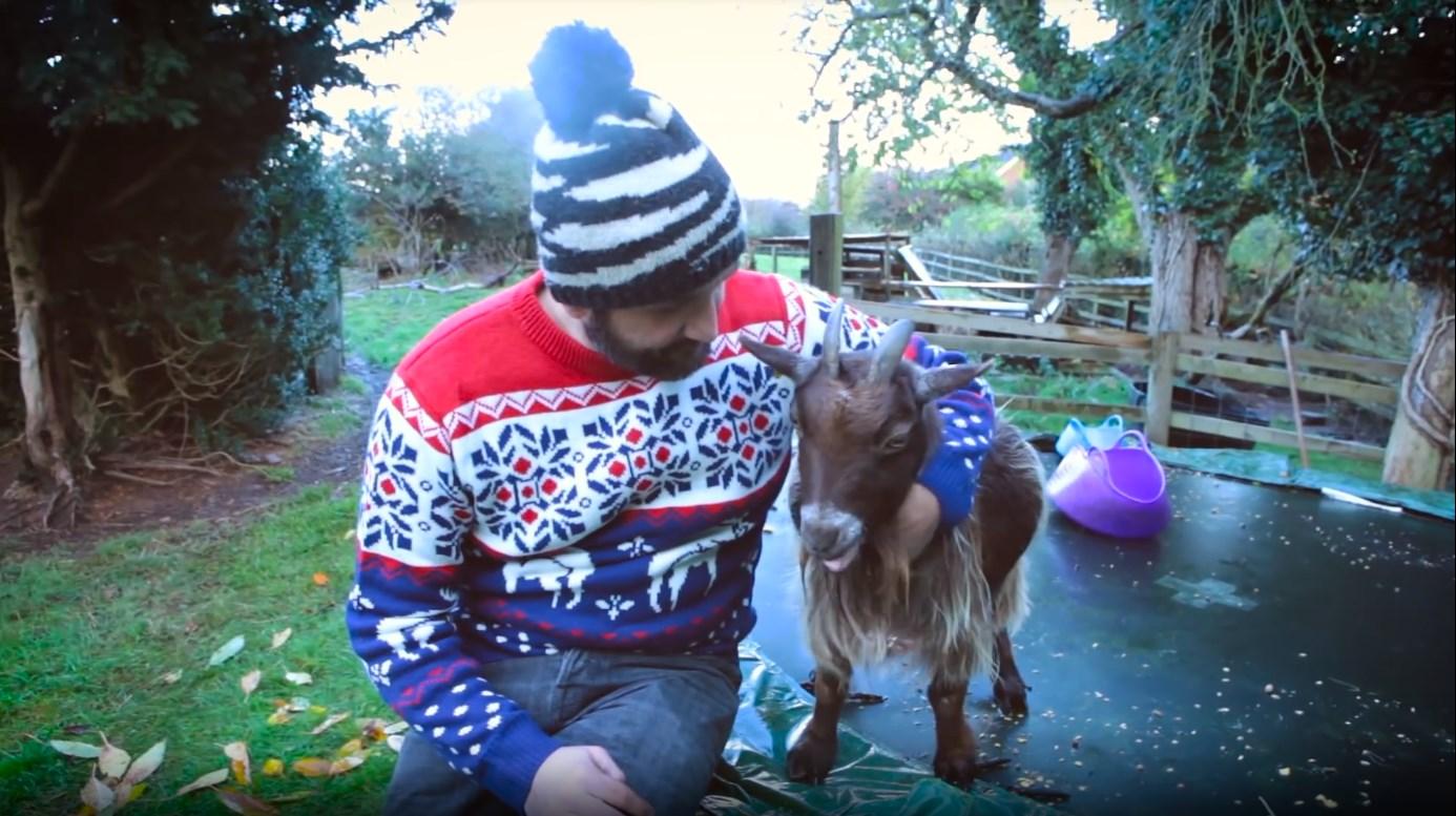 Jumping Goats!